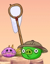 Angry birds Stella Pigs-2