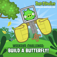 Buduj Motyla