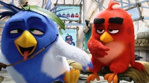 Angry Birds в кино - Русский Трейлер (2016)