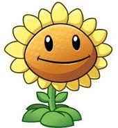 Sunflower.PVZ2