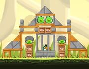 Зелёная птица 2