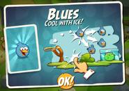 Синие птицы открыты