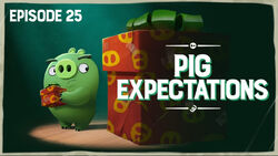 Pig Expectations TC