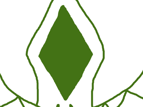Heinouswiki63