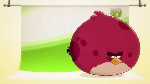 NEW! Angry Birds Go! character reveals Terence