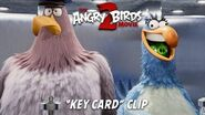 The Angry Birds Movie 2 – Key Card Clip - At Cinemas August 2