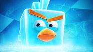 IceBombBird