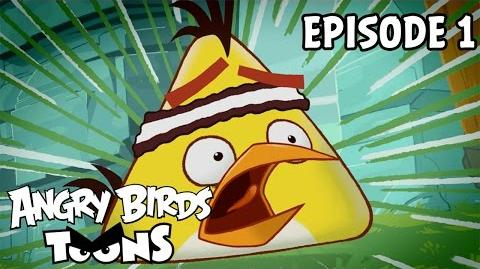 Angry Birds Toons Chuck Time - S1 Ep1