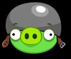 HelmetPig