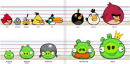 Size chart birds and pigs