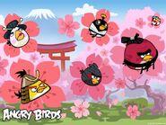 Angry-Birds-Cherry-Blossom-02