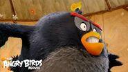 The Angry Birds Movie - Meet Bomb