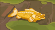 Golden-Koi-Fish