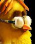 70px-Flocker Yellow Portrait 008