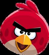 Красная птица 4