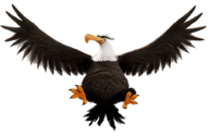 ABMovie Mighty Eagle Flying