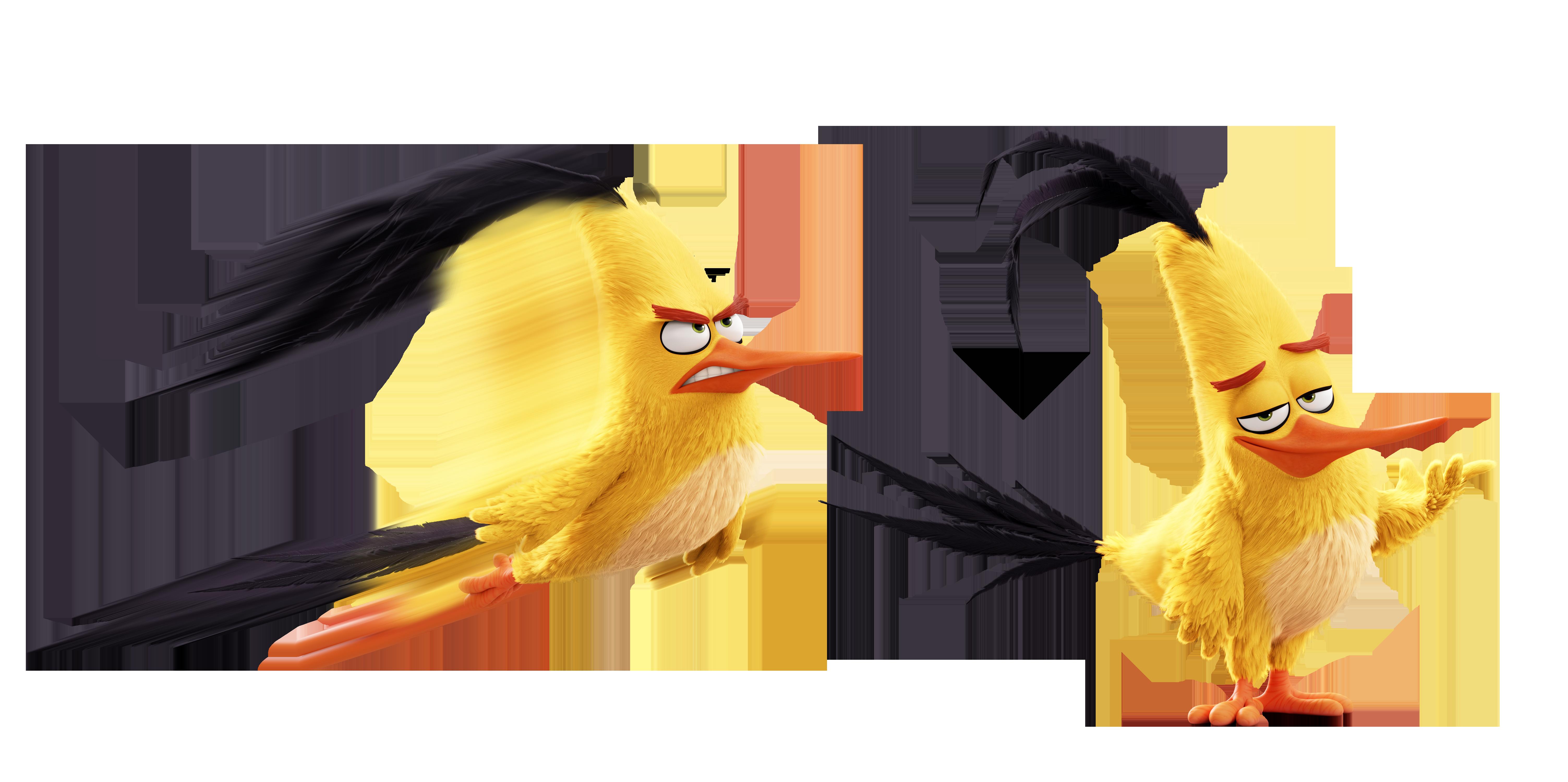 Chuck Angry Birds Wiki Fandom