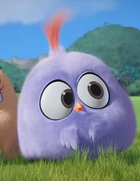Will Angry Birds Wiki Fandom