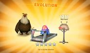 Li'l Pecker Evolution