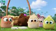 """Светлой Пасхи от """"Angry Birds 2 в кино"""""""