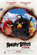 TheAngryBirdsMovieFrenchProtypePoster