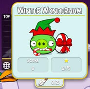 Abs 15 winter wonderham