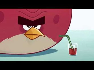Angry Birds Soft Drinks Ad - Terence (2014)
