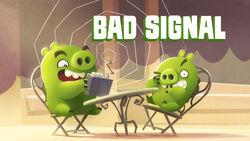 Bad Signal TC