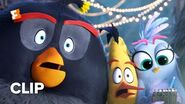 The Angry Birds Movie 2 Exclusive Movie Clip - Super Secret Meeting (2019) Movieclips Coming Soon