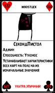 ВиКарта33