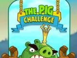 The Pig Challenge