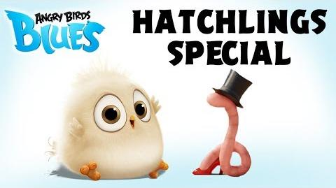 Angry Birds Special The Early Hatchling Gets The Worm-0