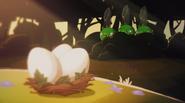 Свинки воруют яйца