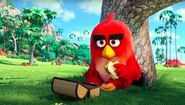 Angry-Birds-movie-001