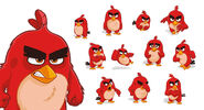 Angry-birds-vector-26