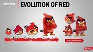 Evolución de Red