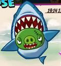 SharkPigLose