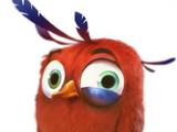 Timothy (Angry Birds Evolution)