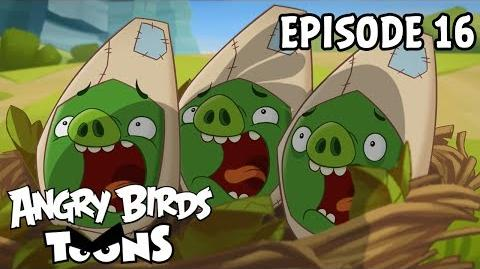 Angry Birds Toons Double Take - S1 Ep16