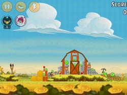 Piggy Farm 32-5