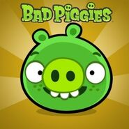 Freckled Pig/Bad Piggies (game)