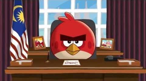 Angry Birds Interception Message