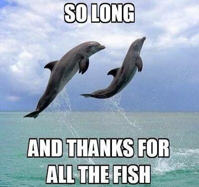 Всего хорошего, и спасибо за рыбу
