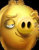 Golden Pig3