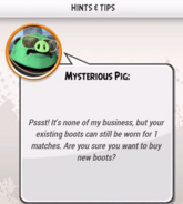 Mysterious Pig