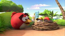 Angry Birds- The 4-D Experience-0