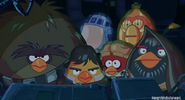 Star wars (angry birds)
