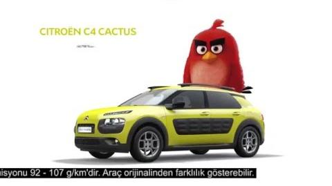 Citroën C4 Cactus - Angry Birds Reklam Filmi