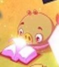 Свин-детёныш в исландс 3