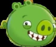 Minion Pig ABT